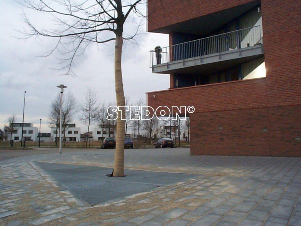 Apeldoorn-Boomroosters-13-1024x768